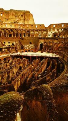 coliseum coliseum