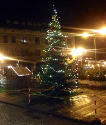 sopron christmas tree